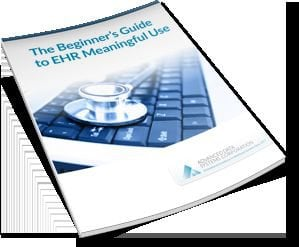 Whitepaper Excerpt: The Beginner's Guide to EHR Meaningful Use