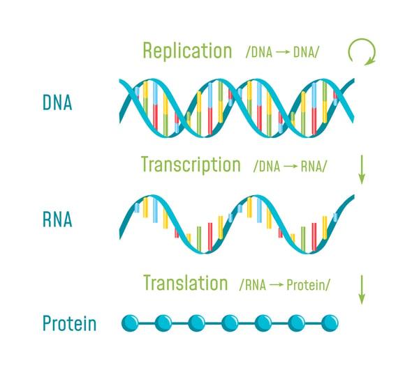 genetic lab billing. genetic/genomic testing